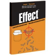 AgroBio EFFECT lapač kuchyňských molů, 1 ks 002046