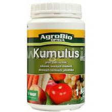 AgroBio KUMULUS WG proti padlí, 1 kg 003066