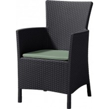 ALLIBERT IOWA (MONTANA) zahradní židle, 62 x 60 x 89cm, hnědá 17197853