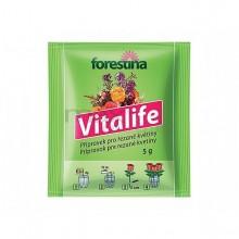 FORESTINA Vitalife 5g - přípravek pro řezané květiny 1231012