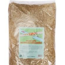 FORESTINA Grass Travní směs rychlé ozelenění 25kg 1012048