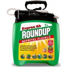 ROUNDUP EXPRAS 6H 5L PUMP & GO 2 1543102