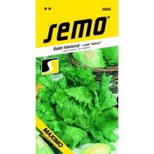 SEMO Salát hlávkový ledový MAXIMO 3855