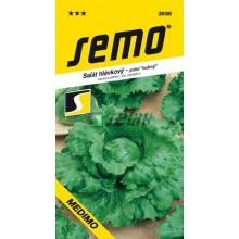 SEMO Salát hlávkový ledový MEDIMO 3858